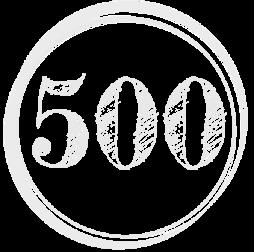 Kennzahl-500
